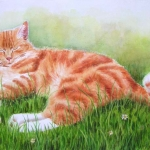 Red Cat laying in grass - Watercolor Cat Painting