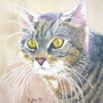 Grey mixed cat with yellow eyes, Portrait Cat Painting in Watercolor