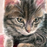 Realistic Watercolor Painting of a grey mixed cat in watercolor