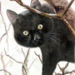 Black cat with curious eyes sitting in a tree - Watercolor Cat Painting