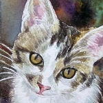 white grey cat in watercolor