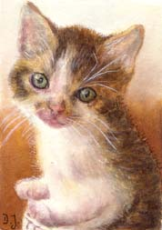 Little kitten sitting in a basket - kitten in watercolor