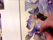How to paint hydrangeas