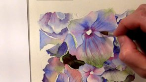 Watercolor online lesson on how to paint hydrangeas