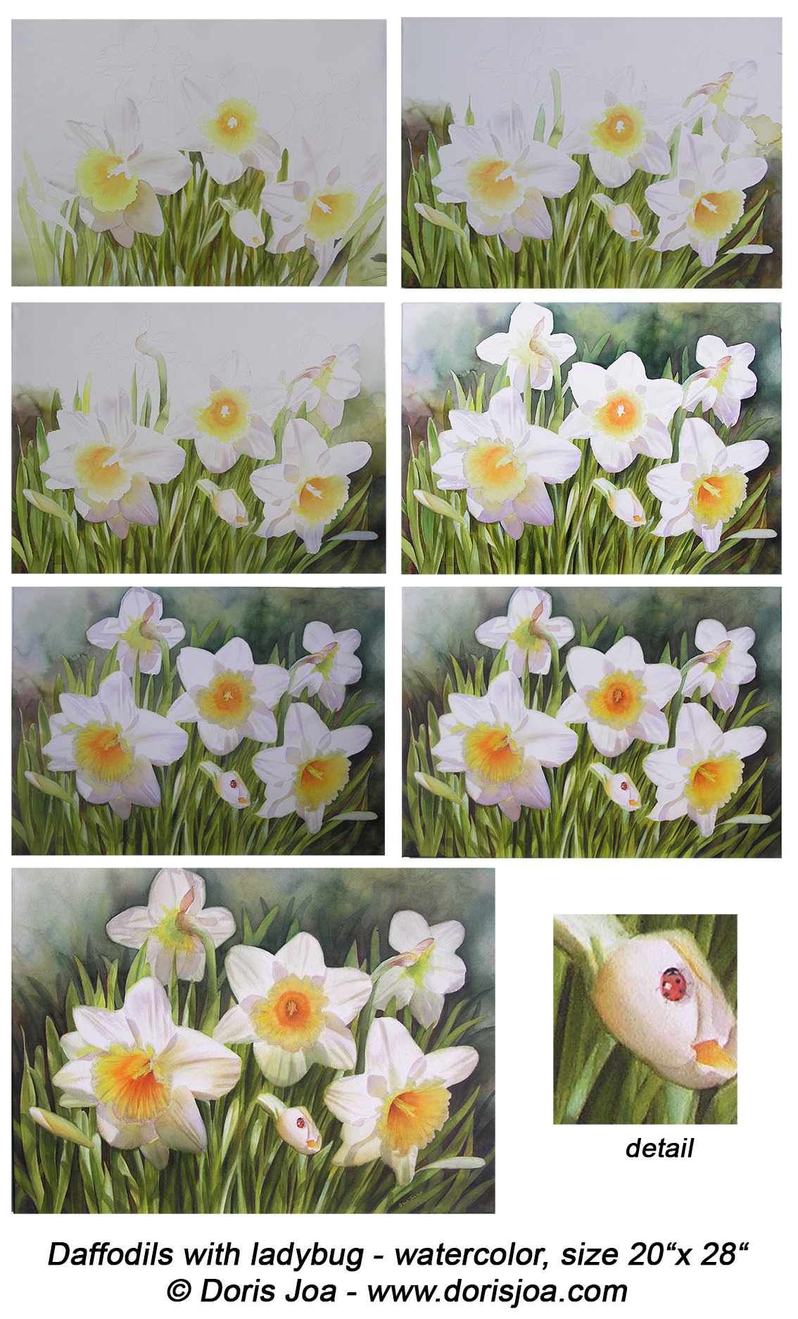 Painting of daffodils flowers in watercolor how to for Watercolor steps