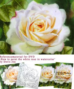 Learn online or with this DVD how to paint with watercolors a complete rose painting - Online Video and Watercolor DVDlesson