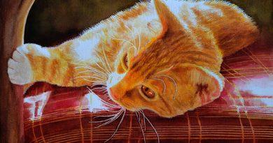 New Cat Painting