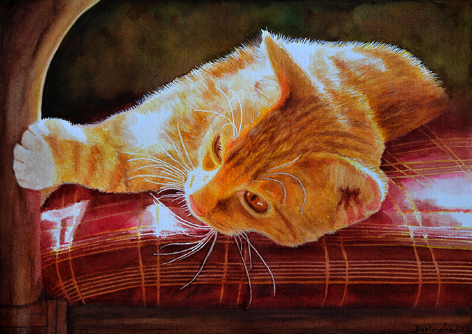 Red Cat laying on red chair - realistic cat painting with sunlight, relaxing cat on a chair with red seat