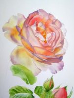 How to paint flowers in watercolor and oil