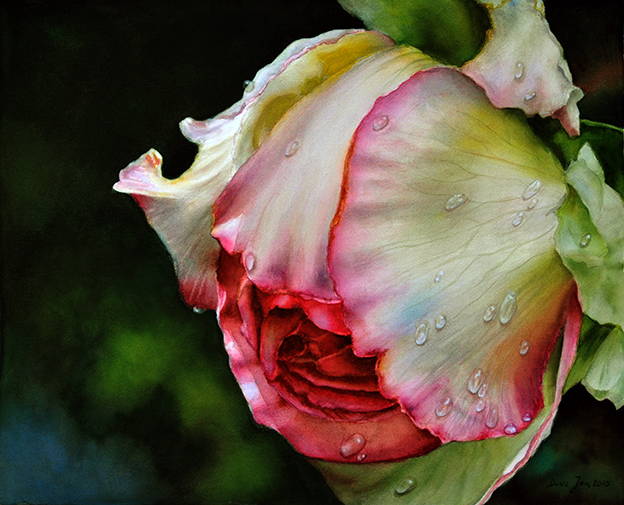 Rose Painting in Watercolor - Rose Honoré de Balzac