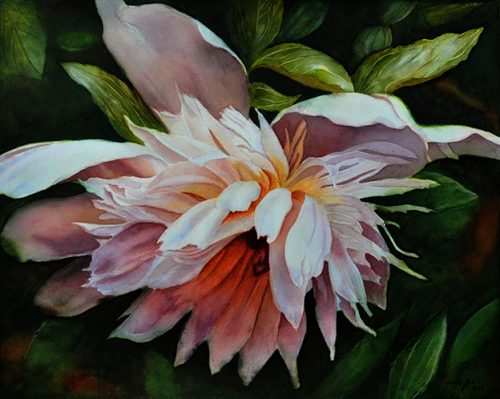 White Peony Flower Painting in watercolor
