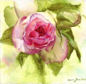 Eden Rose Watercolor Painting by Doris Joa