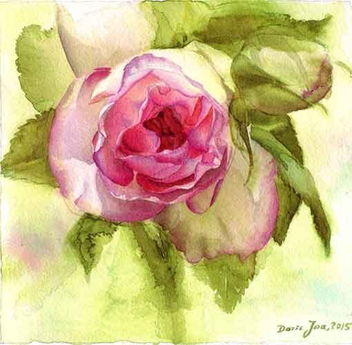 watercolor painting eden rose watercolor oil paintings of