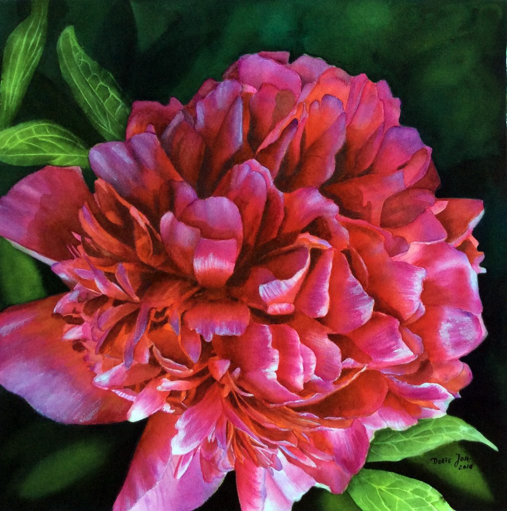 Paeony in red pink purple - Peony Flower Painting in Watercolor by Doris Joa