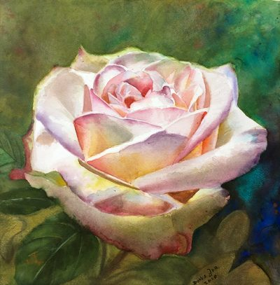 Watercolor Painting - White Pink Rose