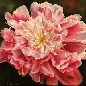 Paeony Flower Painting - realistic art -Watercolor - Aquarelle by Doris Joa