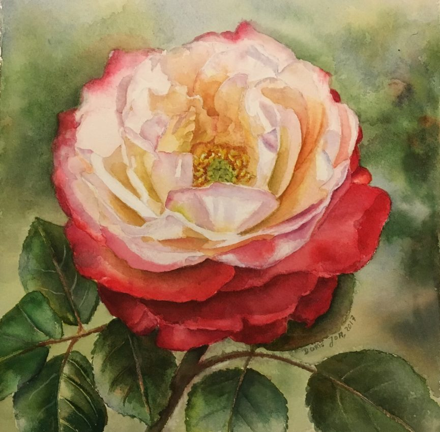 White Red Rose Painting