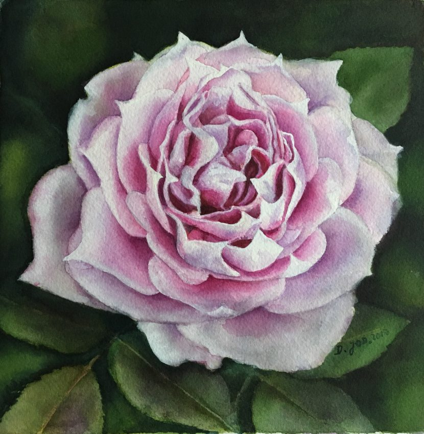 Violet Rose Painting in watercolor