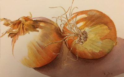 Painting of onions in watercolor