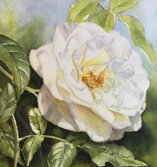 White Rose Flower Painting in watercolor