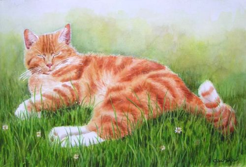 Red cat in grass - watercolor cat painting